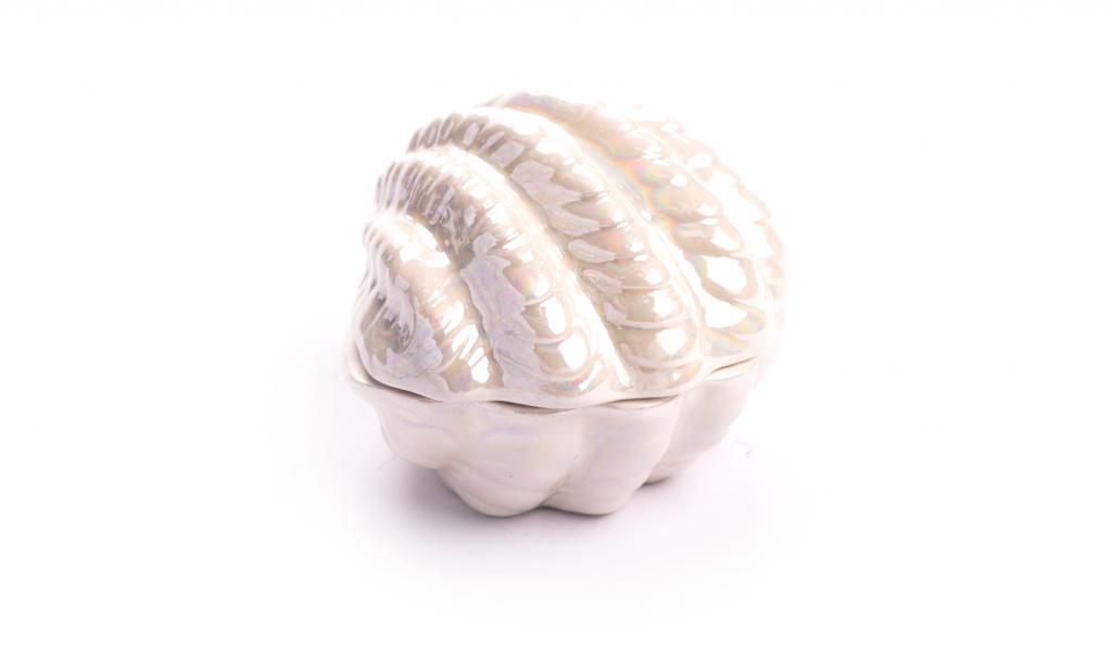 Porcelain shell Box